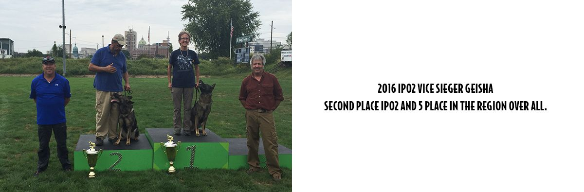 Image Of Trainers Who Give K9 Training To Dogs In Summit, NJ - Pro Canine Center