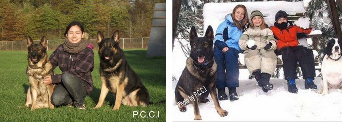 Happy Owners Of Protection Dogs Image - Pro Canine Center