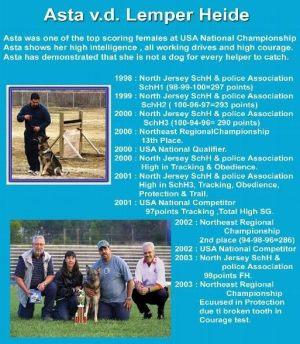 pet-training-academy04