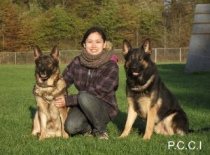 dog-protection-training01